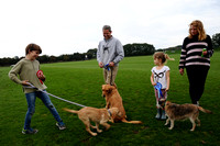 Dog Show at Cowdray Park Polo Club - 24/09/2017