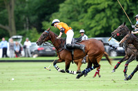 Pommery Polo for the Archie David Cup 2014