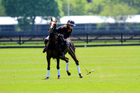 Copenhagen Cup at Guards Polo Club